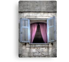 ..open your Window.. Canvas Print