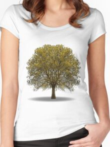tree isolated over white Women's Fitted Scoop T-Shirt