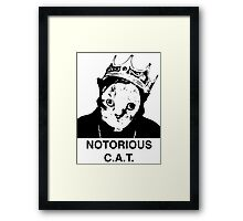 Notorious C.A.T. Framed Print