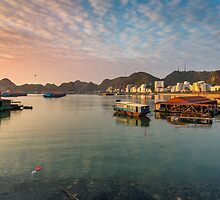 Cat Ba Harbour by Tam Church