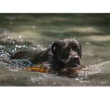 Swimming in Coca Cola Photographic Print