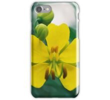 Two Yellow Flowers iPhone Case/Skin