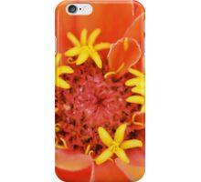 Ohanna iPhone Case/Skin