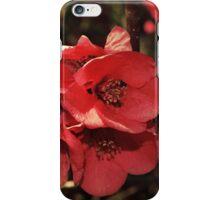 Flori Rosii iPhone Case/Skin