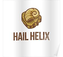 Hail Helix Fossil Poster