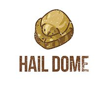 Hail Dome Fossil by JM92