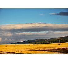 Golden Field III Photographic Print