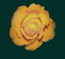 """Spot on"" yellow rose  by ♥⊱ B. Randi Bailey"