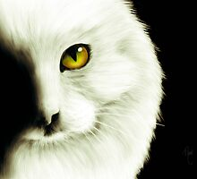 White Cat by April Cleaver