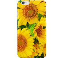 Brilliant Bunch of Sunflowers Tilt Shift Photograph iPhone Case/Skin