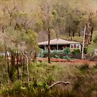 Home Among the Gum Trees by Elaine Teague