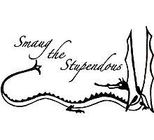 O, Smaug the Stupendous. Photographic Print