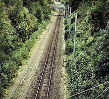 Railroad to... by nsir