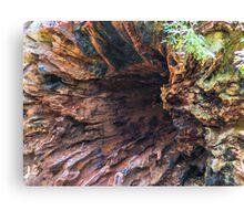 Underneath the Tree Base Canvas Print