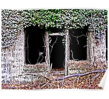 Framing Timbers Poster
