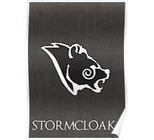 Stormcloak poster Poster