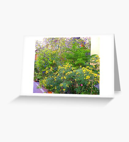 A Riot Of Colour..................French Style Greeting Card