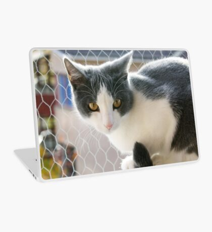 A Max And Mantle Bi Colour Cat Laptop Skin