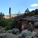 Old stone cabin...Outside Reno Nevada USA by Anthony & Nancy  Leake