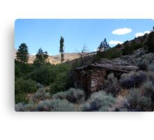 Old stone cabin...Outside Reno Nevada USA Canvas Print