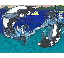Diving Orcas Photographic Print