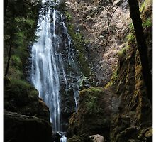 Susan Creek Falls, Oregon by Rogere0829
