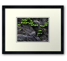 Rocky Wall, Tennessee Framed Print