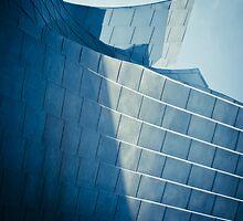 Los Angeles - Walt Disney Concert Hall by mpogorzelski