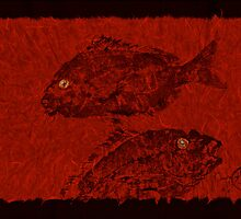 Gyotaku Scup Series 4 Red Unryu Paper by IslandFishPrint