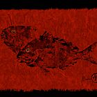 Gyotaku Scup Series 2  Red Unryu Paper by IslandFishPrint