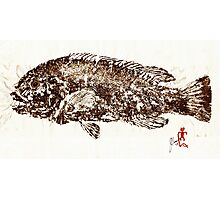 Tautog on Rice Paper Photographic Print