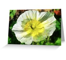 The Icelandic Poppy  Greeting Card