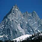 Mont Blanc from Chamonix France 198404270077 by Fred Mitchell