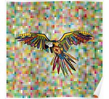 harlequin parrot Poster