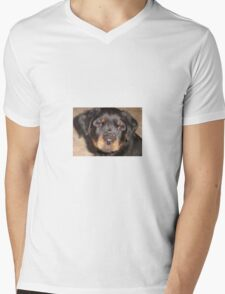 Adorable Rottweiler Puppy Making Eye Contact Mens V-Neck T-Shirt