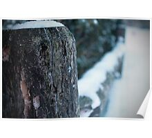 Snowy Fence  Poster
