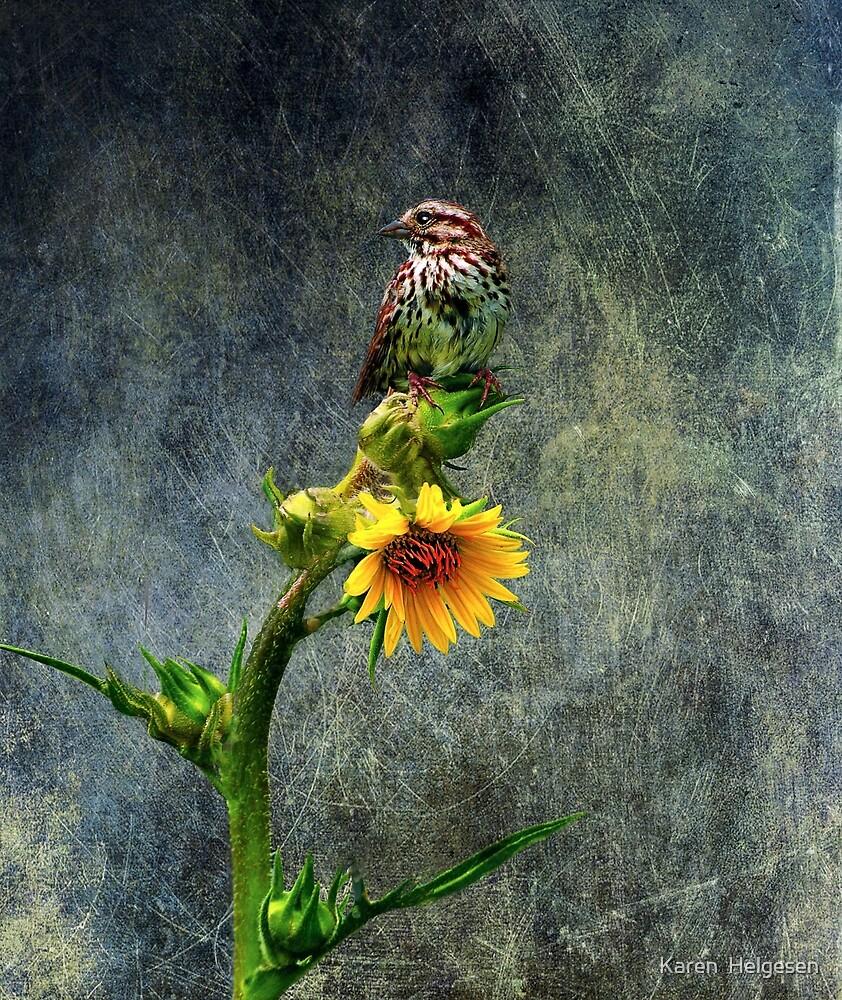 Fly Away... by Karen  Helgesen