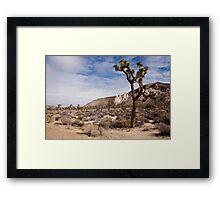 The Joshua Tree Framed Print
