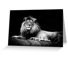 A majestic lion in monochrome Greeting Card
