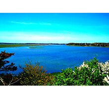 cape cod landscape  Photographic Print