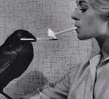 Tippi Hedren having her cigarette lit by a crow on the set of The Birds Sticker