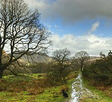 Along The Cumbria Way  by VoluntaryRanger