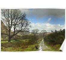 Along The Cumbria Way  Poster
