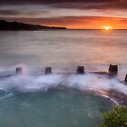 Coogee starburst by Cat M