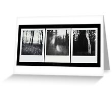 Pinhole - The Wood against The Lights Greeting Card