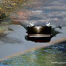 Sacred Doves by DreamCatcher/ Kyrah