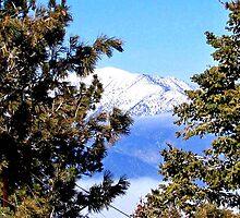SNOW ON THE SAN JACINTO MOUNTAIN RANGE by JAYMILO