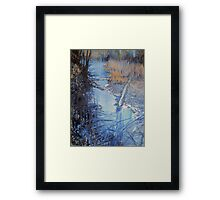 Back Woods Stream Framed Print