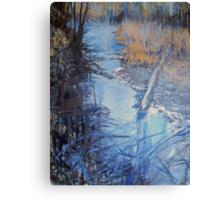 Back Woods Stream Canvas Print