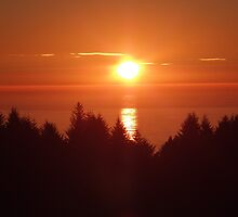 Northern California Sunset by Rene Rivers